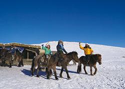 冬のモンゴル